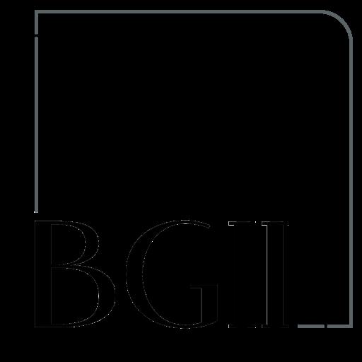 BGII Integrated Investment